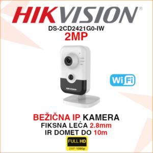 DS-2CD2421G0-IW